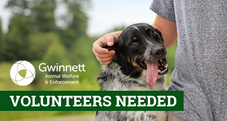 Make a difference. Volunteer with us!