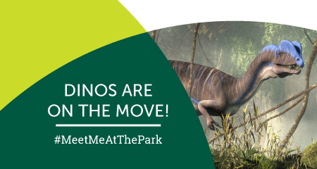 Be a dino tracker and explore Gwinnett's parks! Rawr!