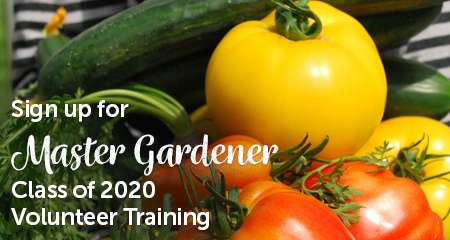 Grow with us! Combine your passion of gardening and education to make a difference.