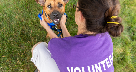 Animal shelter volunteers needed! Help care for the animals during their stay.
